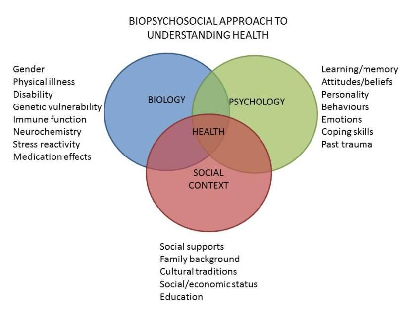 biopsychosocial+model